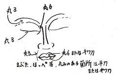 仏頭の彫り方(使用する彫刻刀)