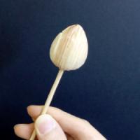 体験教室で作る蓮のつぼみ