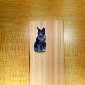木の板に印刷したネコ写真を貼り付ける