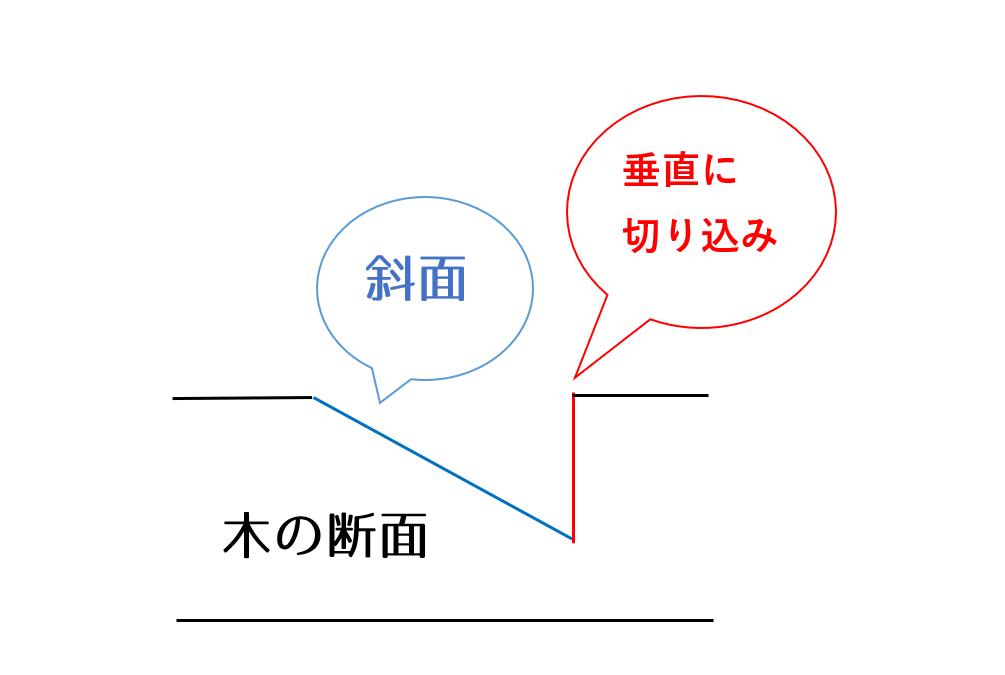三枡文の断面図
