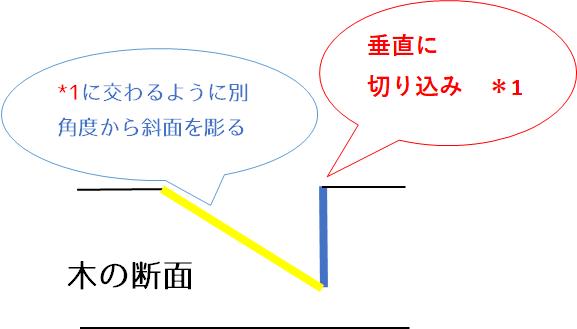 亀甲_断面